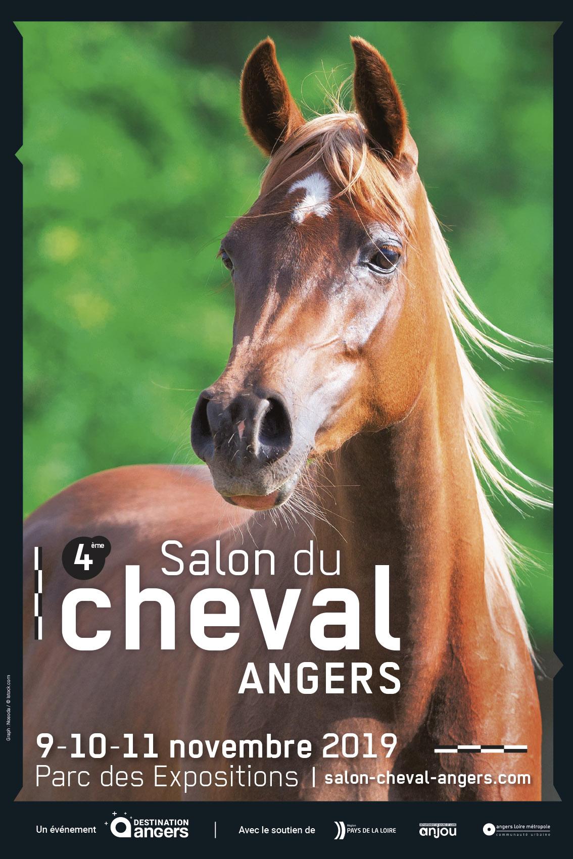 Le Conseil des Equidés de Bretagne sera présent au Salon du Cheval d'Angers