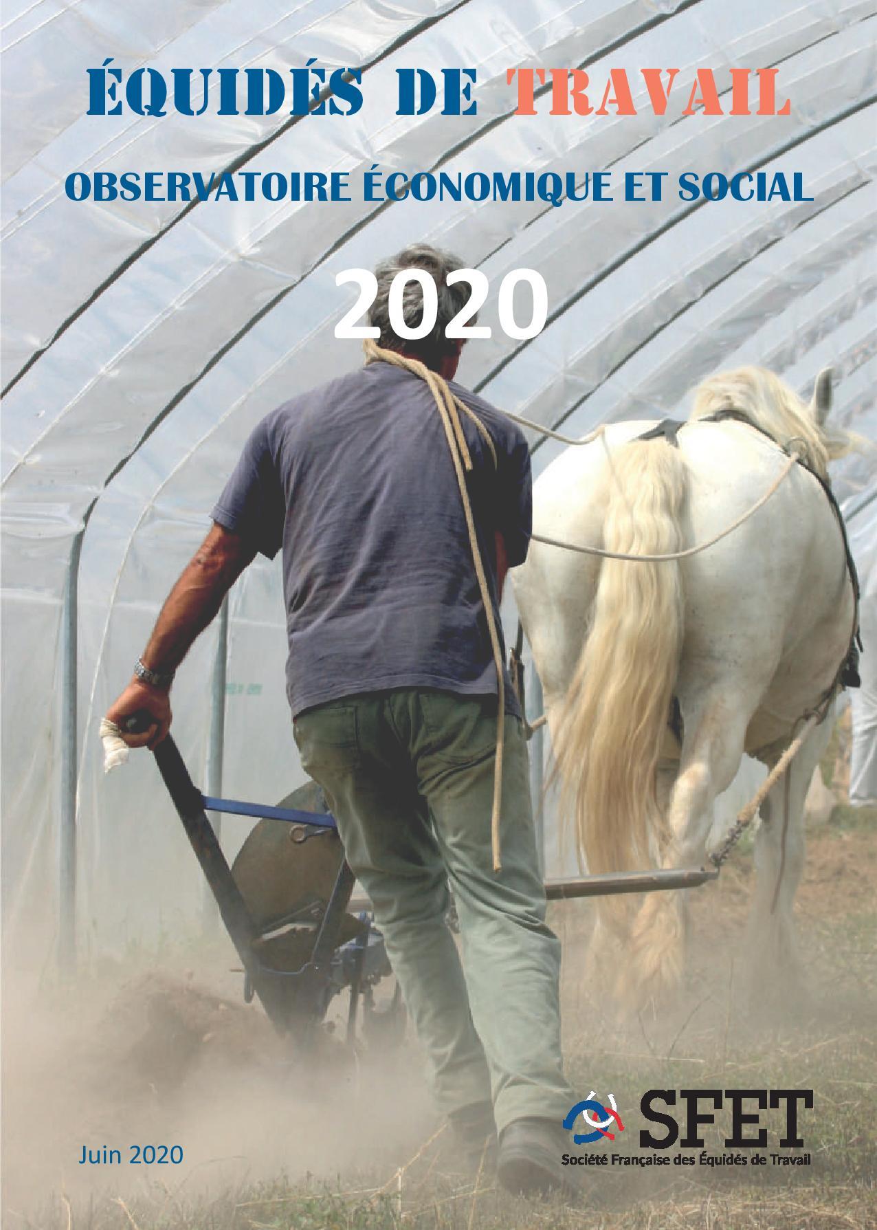 Observatoire économique et social des Equidés de Travail