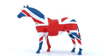 Impacts du Brexit sur l'import/export d'équidés au Royaume-Uni