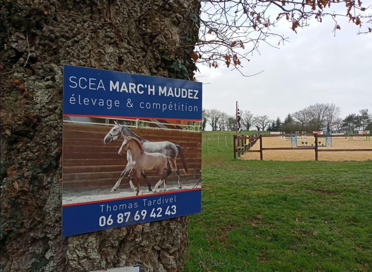 La SCEA Marc'h Maudez, premier élevage labellisé EquuRES en Bretagne