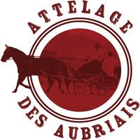 Championnat régional Amateur Club + SHF - Les Champs Genaux