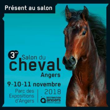 Le CEB sera présent au Salon du Cheval d'Angers du 9 au 11 novembre