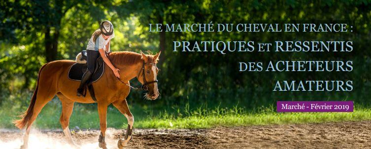 Etude IFCE : Le marché du cheval en France : pratiques et ressentis des acheteurs amateurs