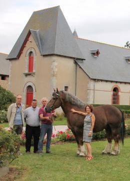 Cavales d'automne entre en lice avec le Cheval Breton