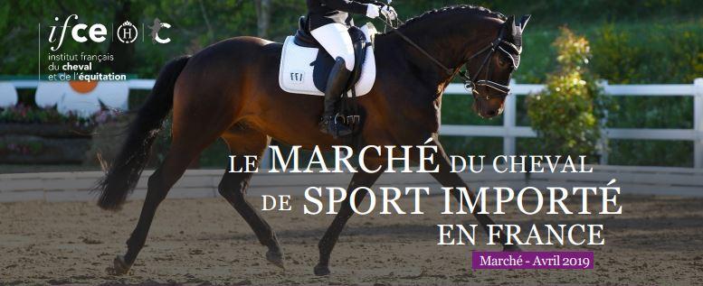 La note sur le marché du cheval de sport importé en France est parue!