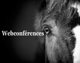 A quelles webconférences cheval de l'IFCE assister en avril