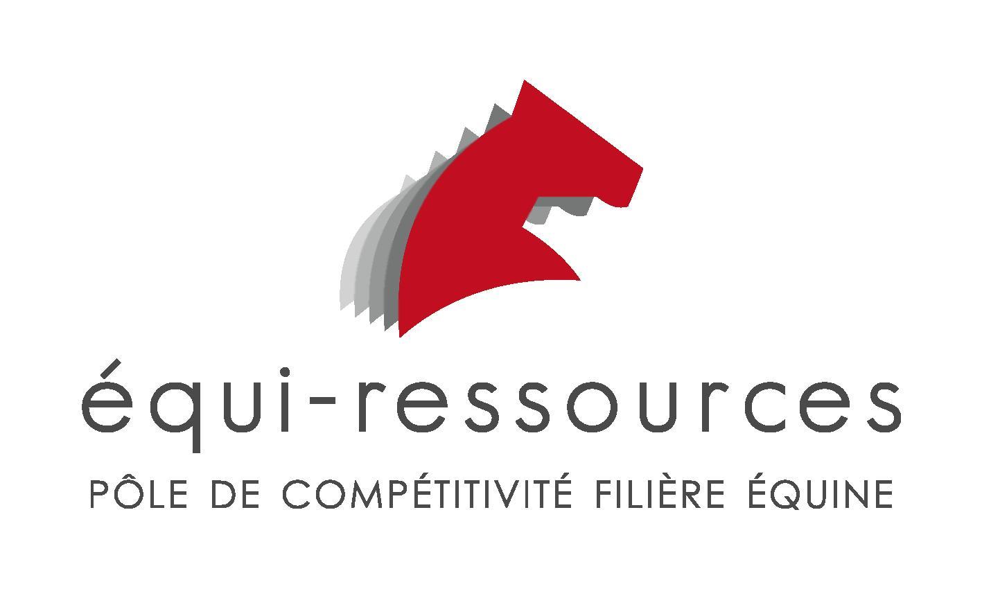 Bilan des offres Equiressources au 31 décembre 2017