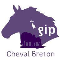Le GIP Cheval Breton recrute un cavalier/meneur/palfrenier/soigneur sur Lamballe