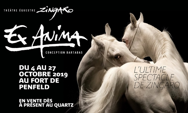"Zingaro : ""ex anima"" : conception Bartabas à Guilers du 4 au 27 octobre"