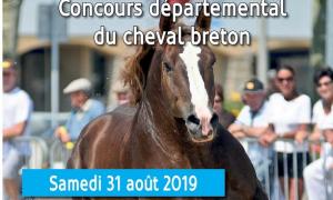 Concours départemental Breton au Haras National de Lamballe