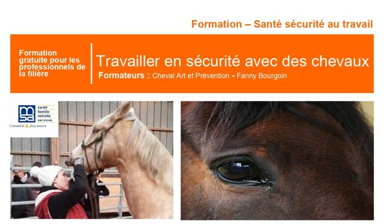 Formation gratuite MSA : Travailler en sécurité avec des chevaux