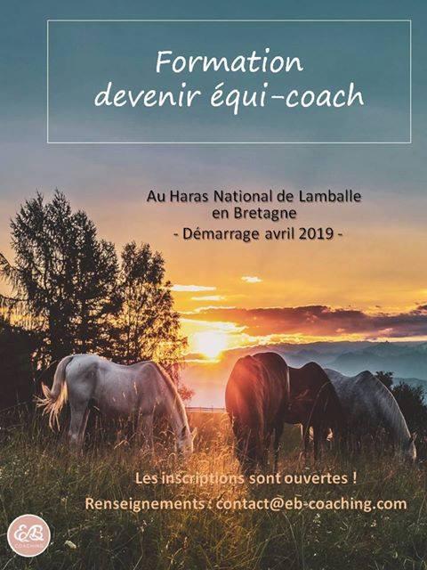 Formation pour devenir équi-coach au Haras National de Lamballe - démarrage avril 2019